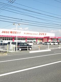 PA255829